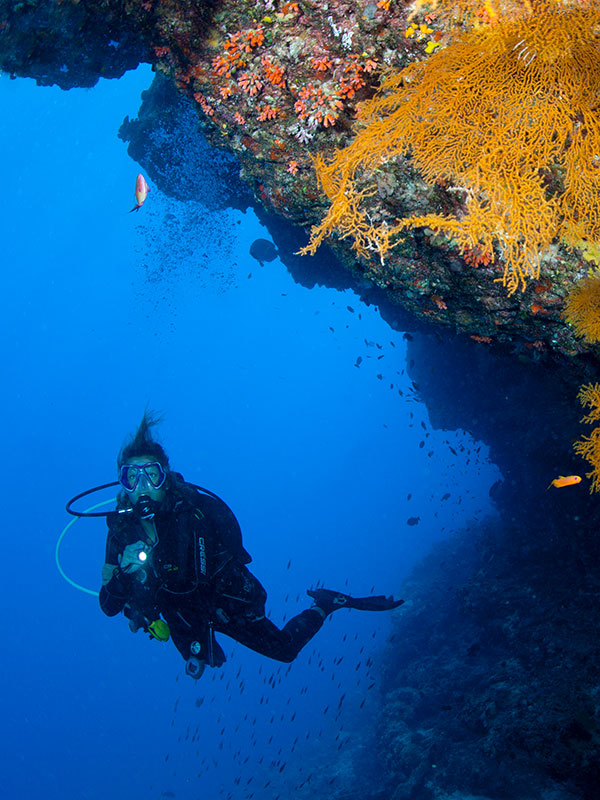 Diving Courses at Sun Divecenter
