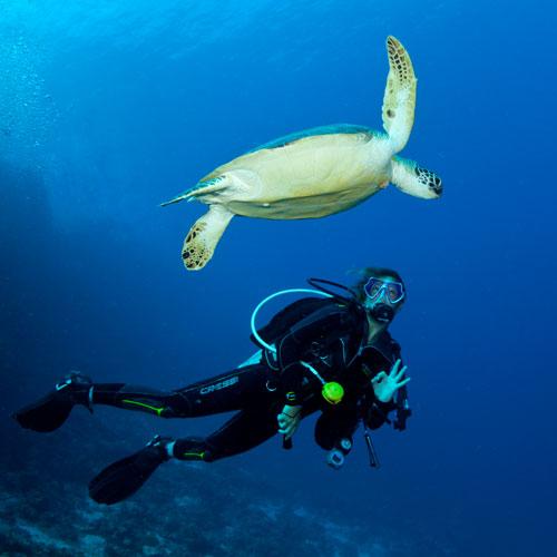 Scuba Diving @ Sun Divecenter